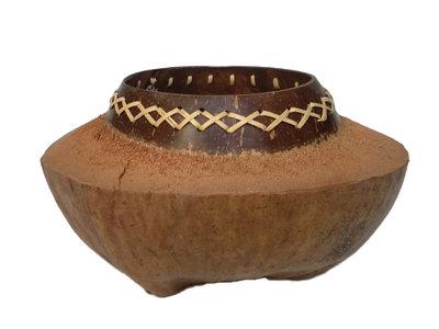 schaal van kokos