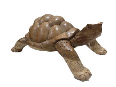 Schildpad van hout, groot