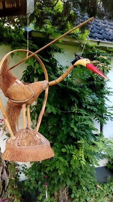 Rare vogel