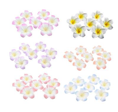 Bloem klein wit