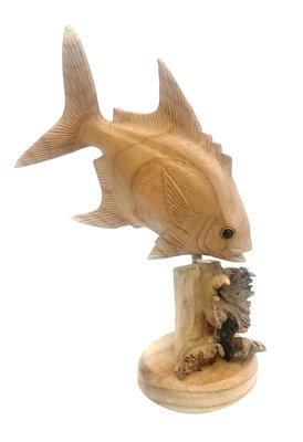 Vis op parasiethout