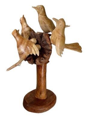 Kolibri / vogels op parasiethout